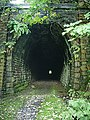 Entrance to Newchurch No2 Tunnel - geograph.org.uk - 970370.jpg