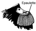 Epaulette (PSF).png