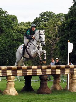 Equestrian sports at the 2012 Summer Olympics - Olympic day 3 event (2).jpg