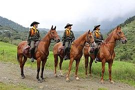 Escuela de Carabineros Alejandro Gutierrez (15590546708).jpg