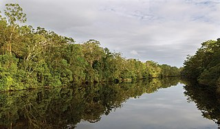 Esk River (New South Wales)