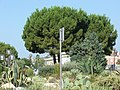 Espace Massena, Nice - panoramio.jpg
