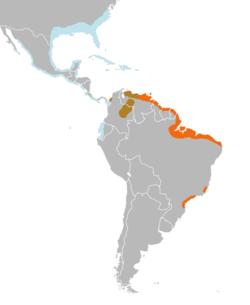 Paraziták listája – Wikipédia