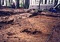 Excavations at a Gallo-Roman Villa.jpg