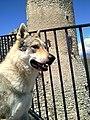 Ezechiele a Rocca di Calascio 05.jpg