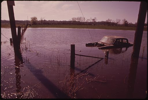 FIELD NEAR BANNER HAS BECOME A LAKE AND CAR IS STRANDED AFTER SPRING FLOODING OF THE ILLINOIS RIVER - NARA - 552439, Deer warning systems