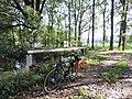 Fahrrad und Natur - panoramio.jpg