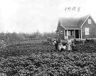Japanese diaspora - View of Ujo Nakano's farm house at Port Hammond, B.C.