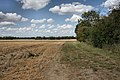 Farm track at Clopton Green - geograph.org.uk - 1478114.jpg