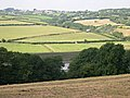 Farmland by the Tamar - geograph.org.uk - 326350.jpg