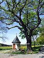 Fatimakapelle-Steinberg.jpg