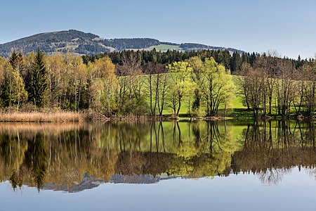 Lake Dietrichstein, Feldkirchen, Carinthia, Austria