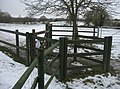Fence and gate - geograph.org.uk - 1341339.jpg