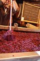 Fermentation tank and cap management Smith-Madrone.jpg