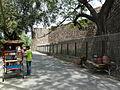 Feroz Shah Kotla wall (3546515128).jpg