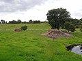 Fields near West Raw Farm - geograph.org.uk - 1427197.jpg