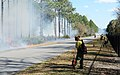 Firefighters burn brush. (8533483413).jpg