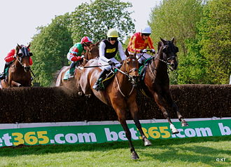 Denise Coates - Bet365 Gold Cup at Sandown in April 2011