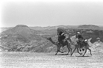 "Ashanti (1979 film) - Camel riders near Eilat, extras on the set of ""Ashanti""."