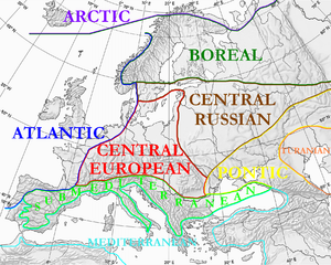 Life zones of central Europe - Floristic regions of Europe