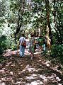 Flower Bowl Walk Kattang NR 2.jpg