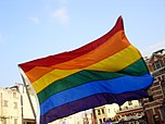 Flying rainbow flag at Taiwan Pride 20041106.jpg