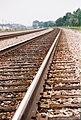 Follow the tracks... (934160870).jpg