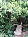 Footbridge near Drews Farm - geograph.org.uk - 1523483.jpg