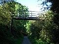 Footbridge over cycle track - geograph.org.uk - 567623.jpg
