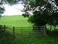 Footpath across the fields to Crackenthorpe - geograph.org.uk - 925642.jpg