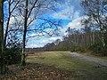 Footpath beside the woods - geograph.org.uk - 1755284.jpg