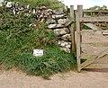 Footpaths divide, Pentire Head - geograph.org.uk - 1289238.jpg