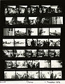 Ford B2123 NLGRF photo contact sheet (1976-11-01)(Gerald Ford Library).jpg