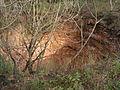 Forn de calç del Pollet (Subirats) - 5.jpg