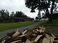 Fort Langely - panoramio.jpg