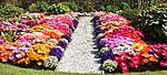 Front garden IMG 1813 (9520375492).jpg