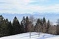 Fruitières de Nyon in winter - panoramio (49).jpg
