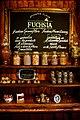 Fuchsia (39380556).jpeg
