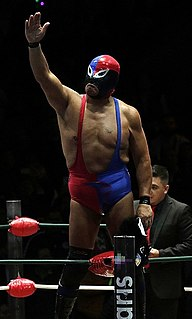 Fuerza Guerrera Mexican professional wrestler