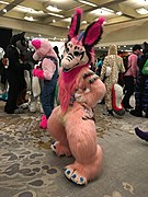 Furnal Equinox 2018 IMG 0158.jpg