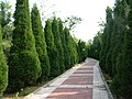 Fushan, Yantai, Shandong, China - panoramio (4).jpg