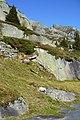 Göschenen, Switzerland - panoramio (13).jpg