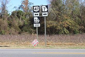 Georgia State Route 33 - Northern terminus