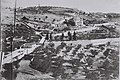GENERAL VIEW OF THE MOUNT OF OLIVES IN JERUSALEM. (COURTESY OF AMERICAN COLONY) נוף של הר הזיתים בירושלים.D826-055.jpg