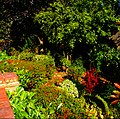 Garden at Holy Family Catholic Church, SUTTON, Surrey, Greater London - Flickr - tonymonblat.jpg