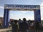 Gate of the 22nd FAI World Hot Air Balloon Championship.jpg
