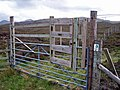 Gate with a gate - geograph.org.uk - 1322910.jpg