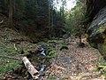Gelobtbachtal, údolí Klopotského potoka - panoramio (44).jpg