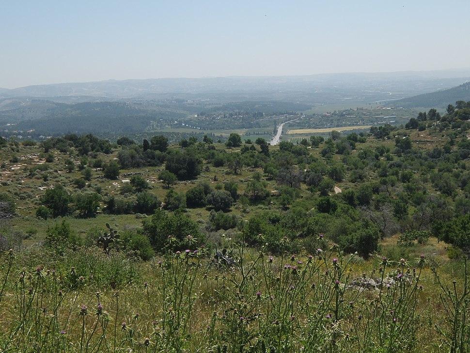 General view of the ruin, Bayt Nattif, April 2015