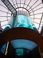 Giant Fish Tank in Berlin 2.jpg